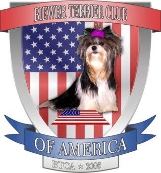 About Us, Havanese and Biewer Terrier Puppies Punta Gorda FL